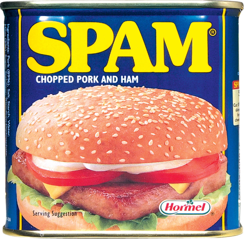The Origin of Spam